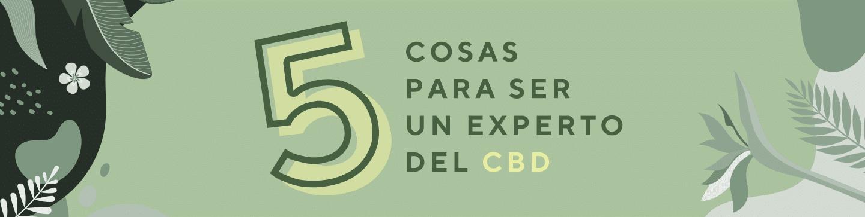 Las 5 cinco cosas imprescindibles para ser un experto en CBD cannabidiol. Comprar CBD en estancos, fijarse en la composición y saber que su producción es 100% natural.